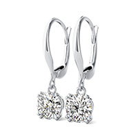 Double Prong Leverback Earrings